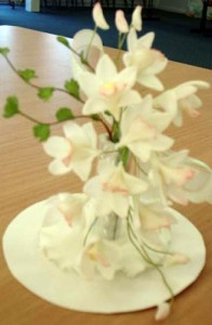 Singapore and dendrobium orchids