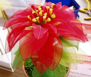 Stocking flowers (poinsettia, iris, rose, orchids, arum lily and daffodil)