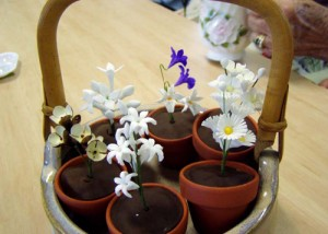 Filler flowers