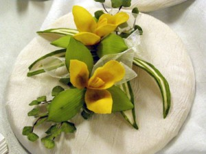 Lycaste cruenta and encyclia mariae