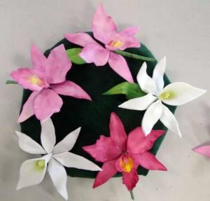 Angraecum and laelia orchids