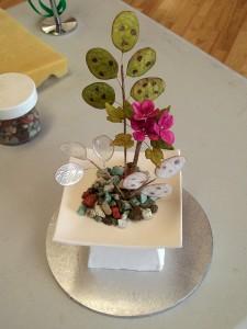 Lunaria (honesty plant)